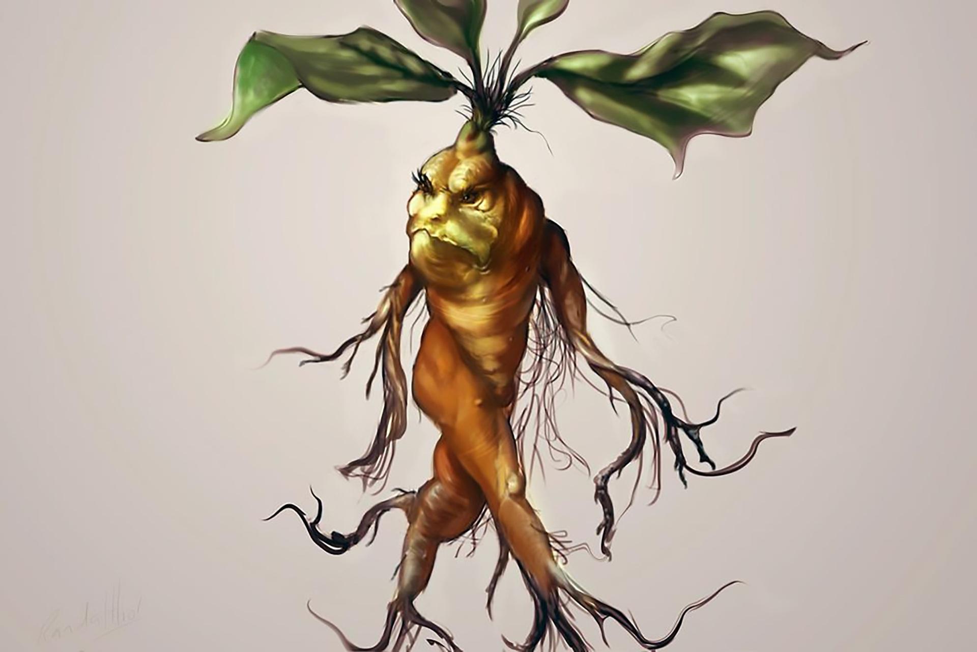 Flash-Fiction-Friday - FF-Mandrake-Stew.jpg